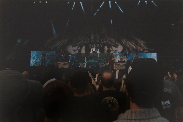 graspop2015_wegwerpcamera_emmelieherwegh_21